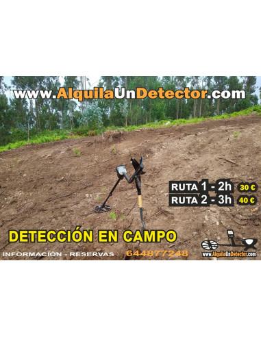 Detección en Campo